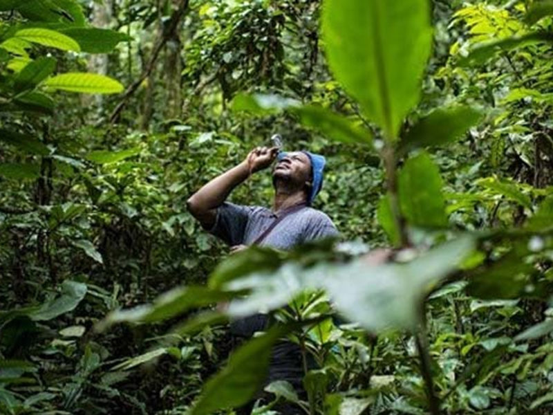 biodiversite animal pensant AFD
