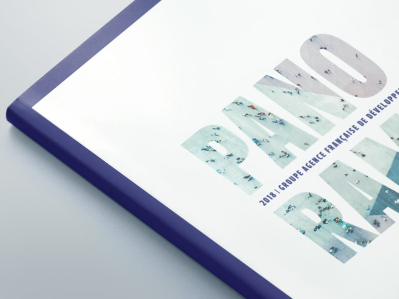 Rapport d'activité 2018 du groupe AFD   Animal pensant