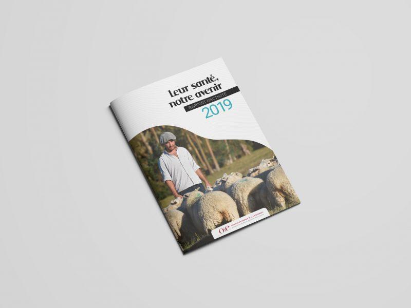 Rapport d'activité 2019 de l'OIE