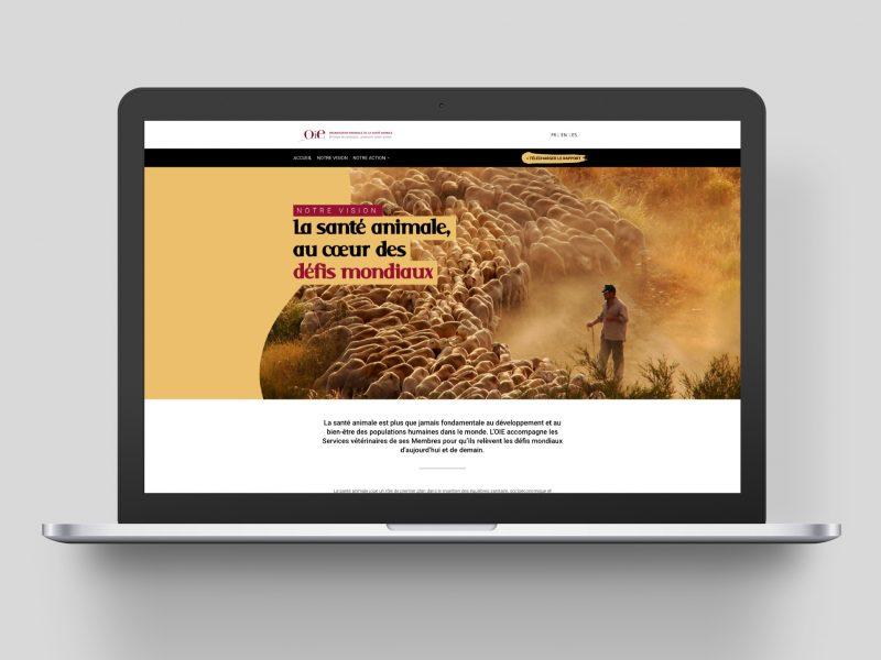 Site web rapport d'activité 2019 de l'OIE