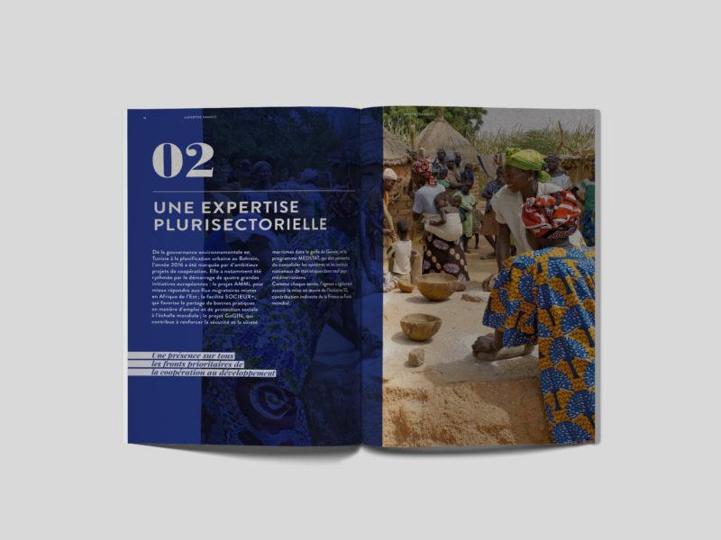 rapport-annuel-2016-animal-pensant-expertise-france-3
