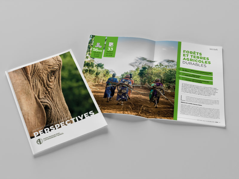 rapport-annuel-FFEM-2019-animal-pensant-1