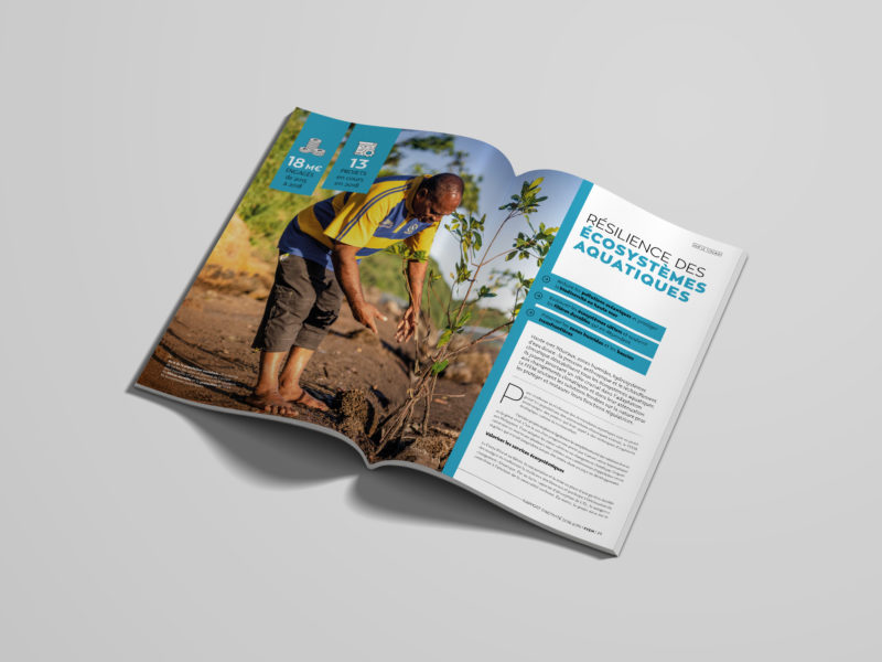 rapport-annuel-FFEM-2019-animal-pensant-2