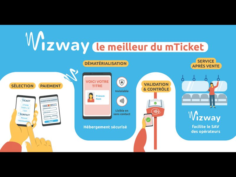 wizway-Infographie-ecosysteme-animal-pensant