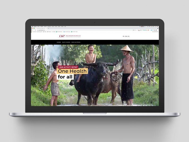 oie-rapport-activite-2020-web-animal-pensant-1